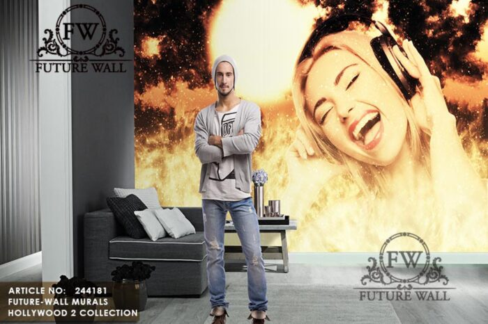 HOLLYWOOD-2---BY-FUTURE-WALL-MURALS-081