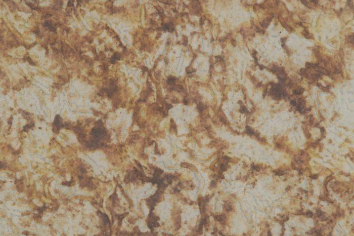 arboreal-513-1200x750