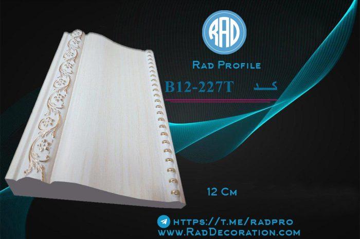 B12-227