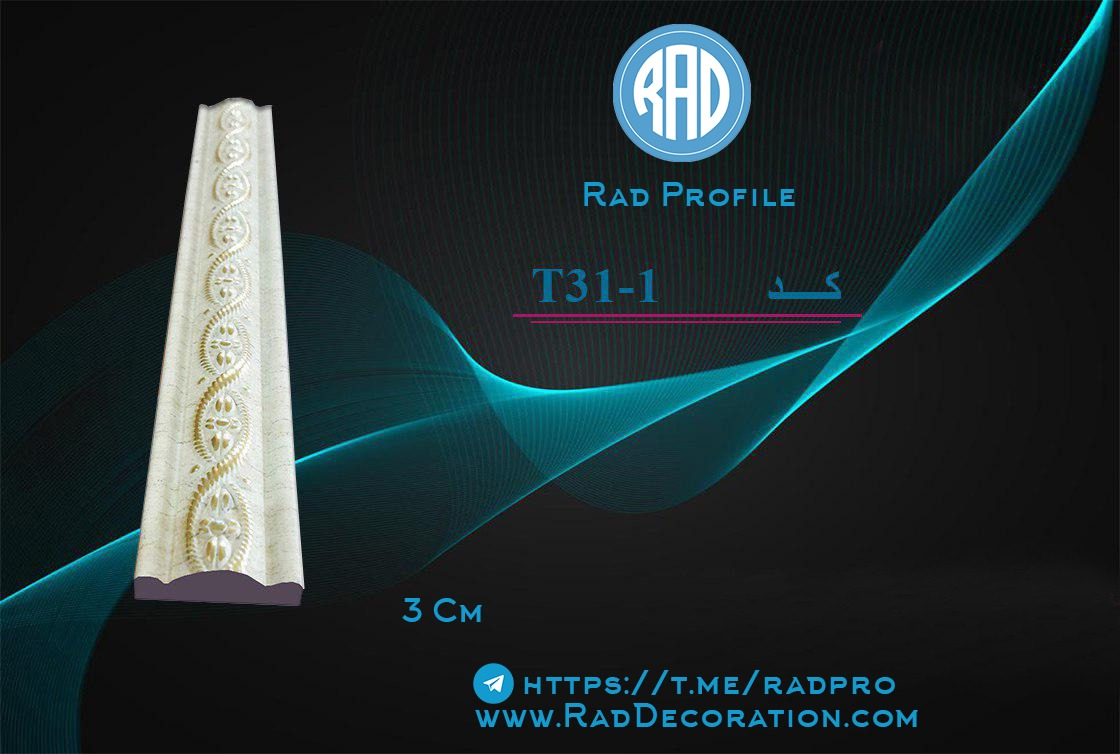 T31-1